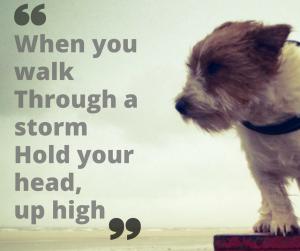 when-you-walke280a8through-a-storm-e280a8hold-your-heade280a8up-high